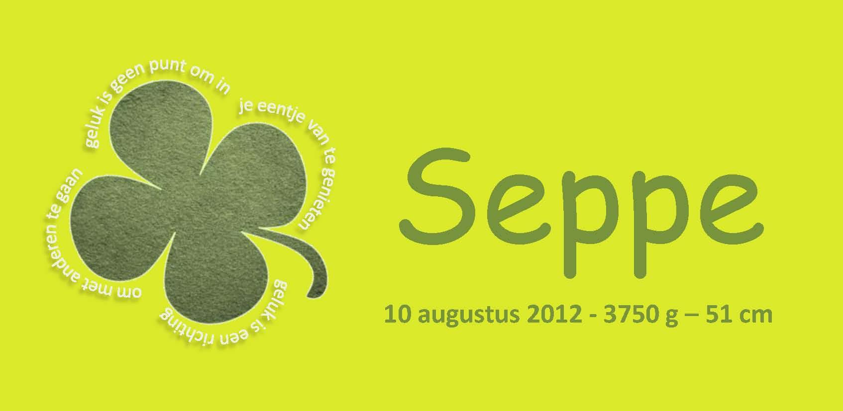 voorkant geboortekaartje van Seppe: homes.esat.kuleuven.be/~phendrik/seppe